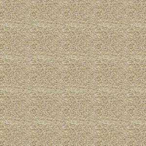 دانه خاکی اشل